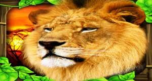 Скачать Safari Simulator: Lion держи Андроид